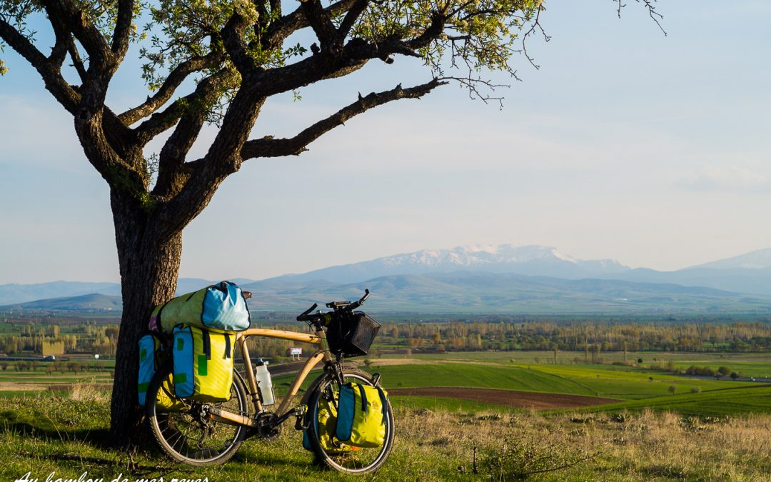Bamboo Bike – Au bambou de mes rêves