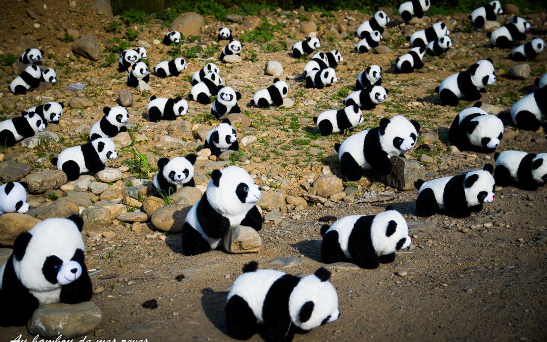OHHH mes amis les panda !!