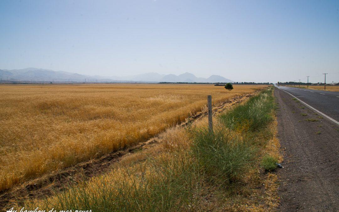 Astara to tehran – 9029 – 150617